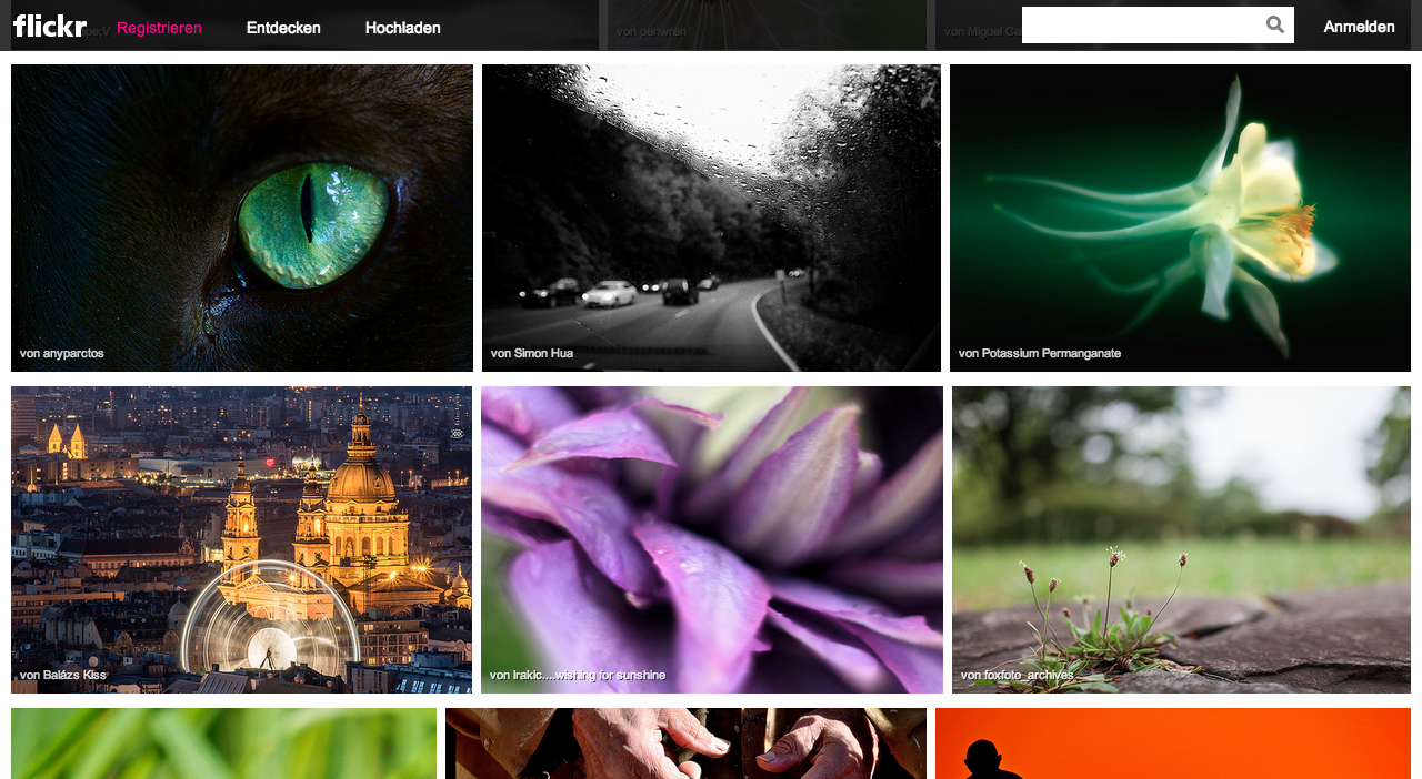 Flickr Website Entdecken